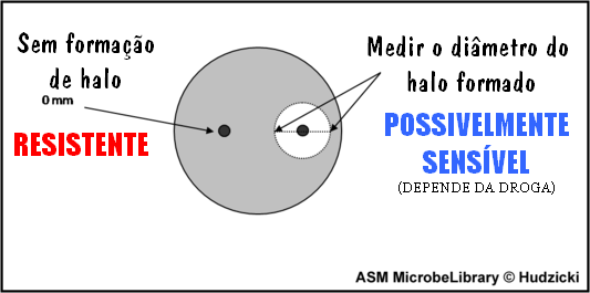 2493_8 measuring diagram
