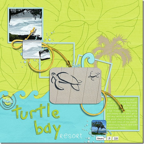 fdd_tdg_turtlebayresort600