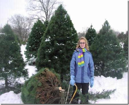 Christmas Tree 2008 017