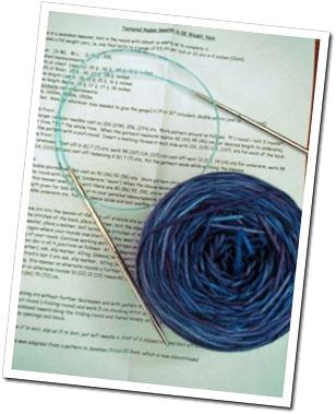 BlueberrySweaterBoardCrossDSC02775_edited-1