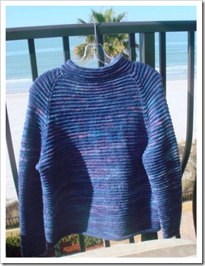 Blueberry SweaterHanging