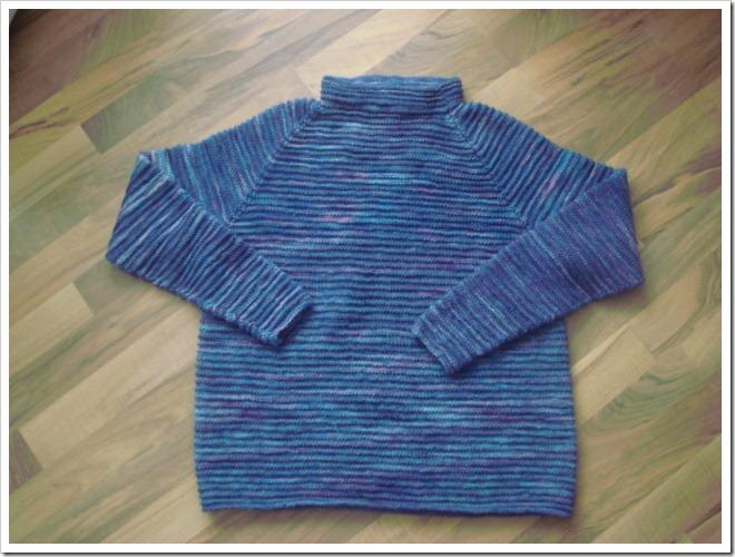 BlueberrySweaterDSC02894