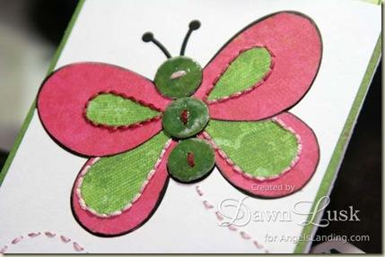 LSC Butterfly closeup