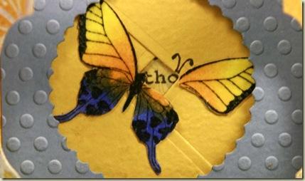 TLC278 butterfly