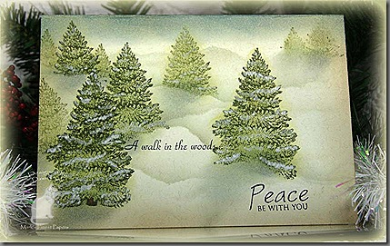 TLC303 Peace Be With You_ks