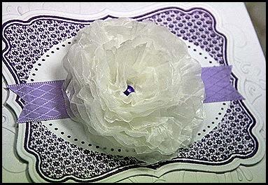 WT waxpaper flower clsup