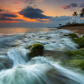 blowing the moss by Budi Astawa - Landscapes Waterscapes ( bali, cupel, sunset, wave, moss, beach, negara )
