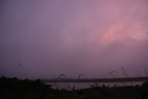 Pink fog as the sun sets