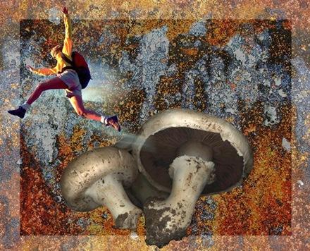 pulando cogumelos (Large)[5]