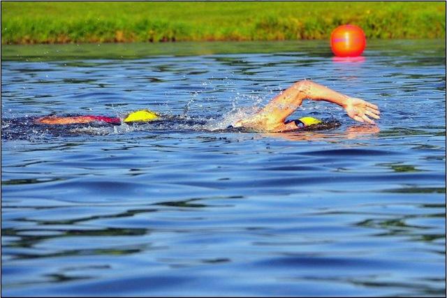 [swim4[5].jpg]