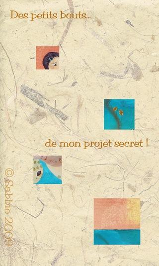 bouts projet secret