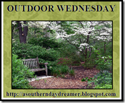 Outdoor_Wednesday_logo[4]
