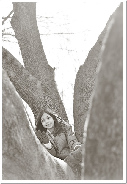 keona in tree