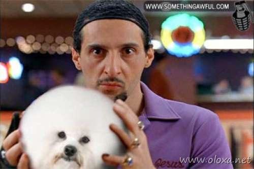puff-dog-meme-11