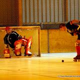 Rink Hockey 22.jpg