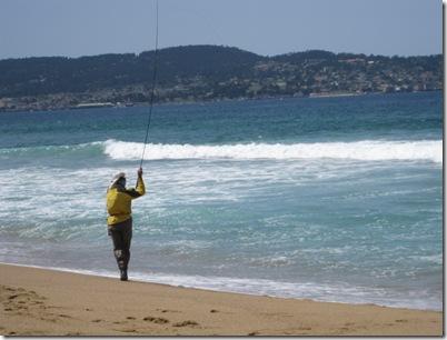 SEA OTTER 2010 009