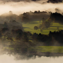 Misty Morning by David O'Gorman - Landscapes Prairies, Meadows & Fields ( ireland, fog, trees, coast, sligo, mist )