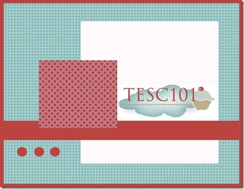 TESC101sketch