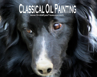 Border Collie Face Oil Photo Painting