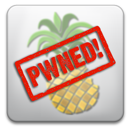 pwnagetool-pwned-2011-04-4-14-20.png