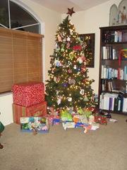 Christmas 2010 038