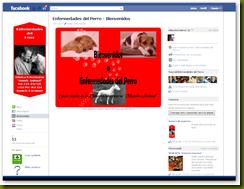 personalizar_pagina_facebook8