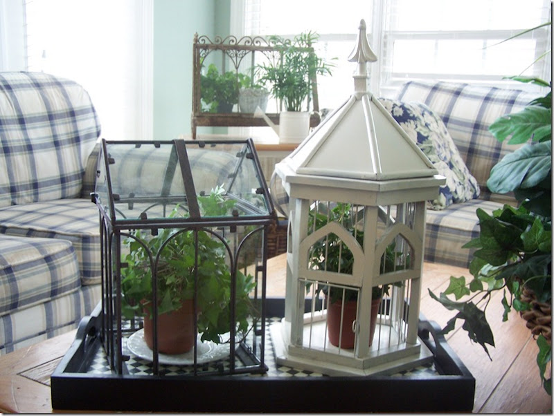 Bird Cage 011