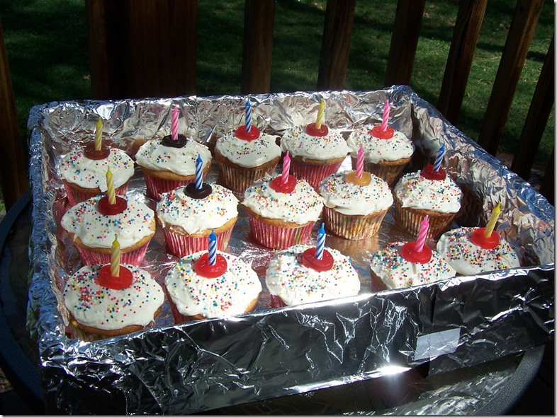 Cup cakes and mail box flowers 009
