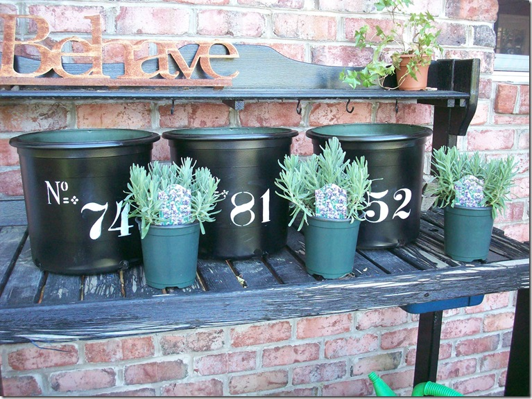 Flower Pots 016