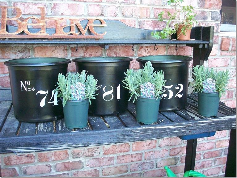 Flower Pots 016