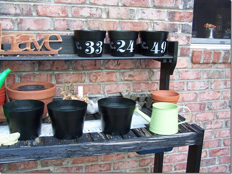 Flower Pots 2 012