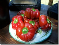 Red Peppers 003