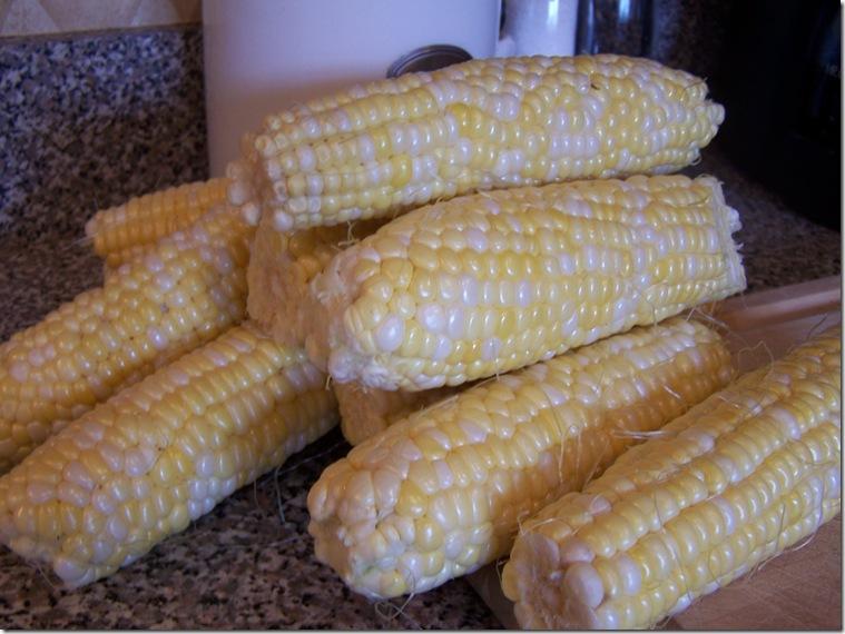 Corn 009