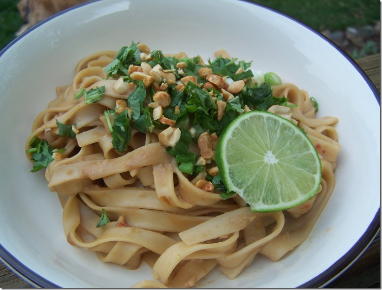 Thai Peanut Noodles 008