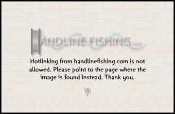 Redrockfish for Rock cod fish
