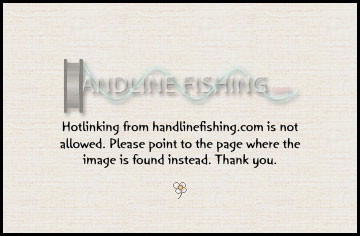 Fivelined Threadfin bream Water In Hand