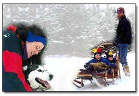 Take the kids dogsledding at Winterdance