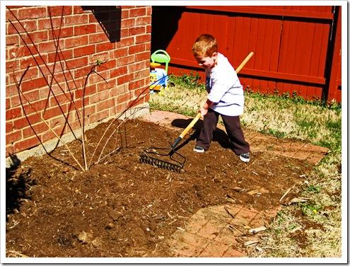 gardening 2010 006