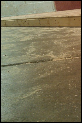 Artsy closeup sawdust picture