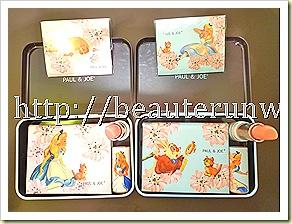 Paul & Joe Alice In Wonderland Fantasy & Day Dream close up