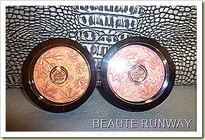 The Body Shop Autumn Smoke & Fire 2010 Collection Pressed Powder Compact