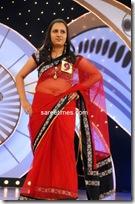 Miss Andhra Pradesh 2010 Contest-sarees (5)