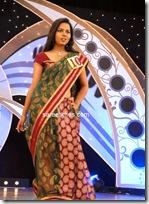 Miss Andhra Pradesh 2010 Contest-sarees (6)