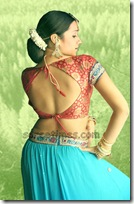 Trisha-Saree-blouse-Design-for-back
