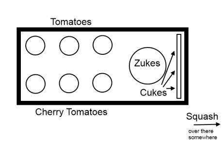 Veg layout