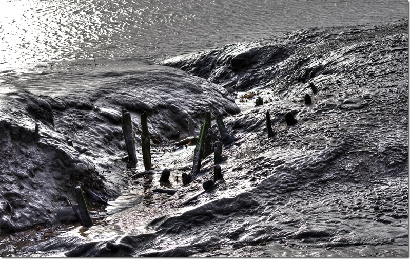 last remains of wrecked wooden boat at saltfleet
