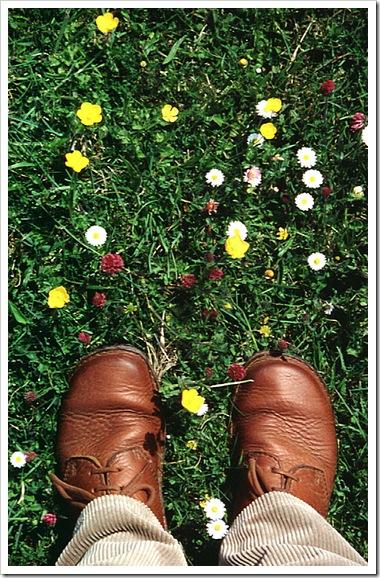 feet on lush meadow
