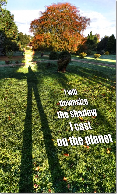 i will downsize the shadow I cast on the planet