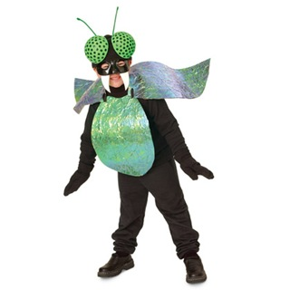 bug-eyed-bug-costume-halloween-craft-photo-420-FF1005COSTA08