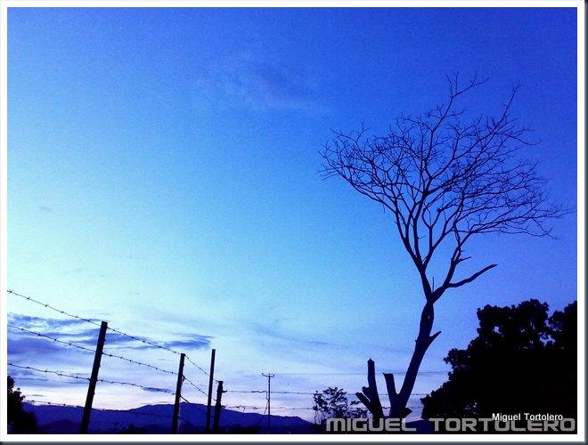 Luego del Sol
